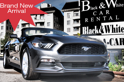 Ford Mustang Convertible Rental
